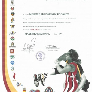 Maestro Nacional - Nivel IV